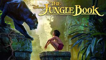 jungle-bool